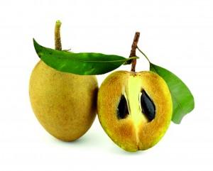 Rohstoffe-Guttapercha-Fruits