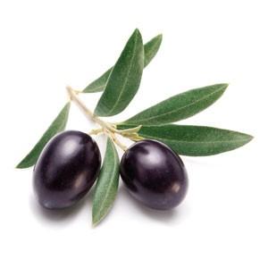 Oliven-PeriO3-Oil